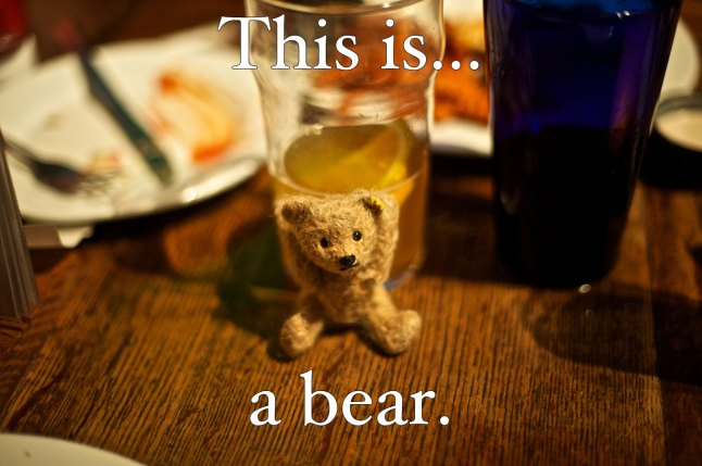This is... a bear. (photo of tiny stuffed bear)